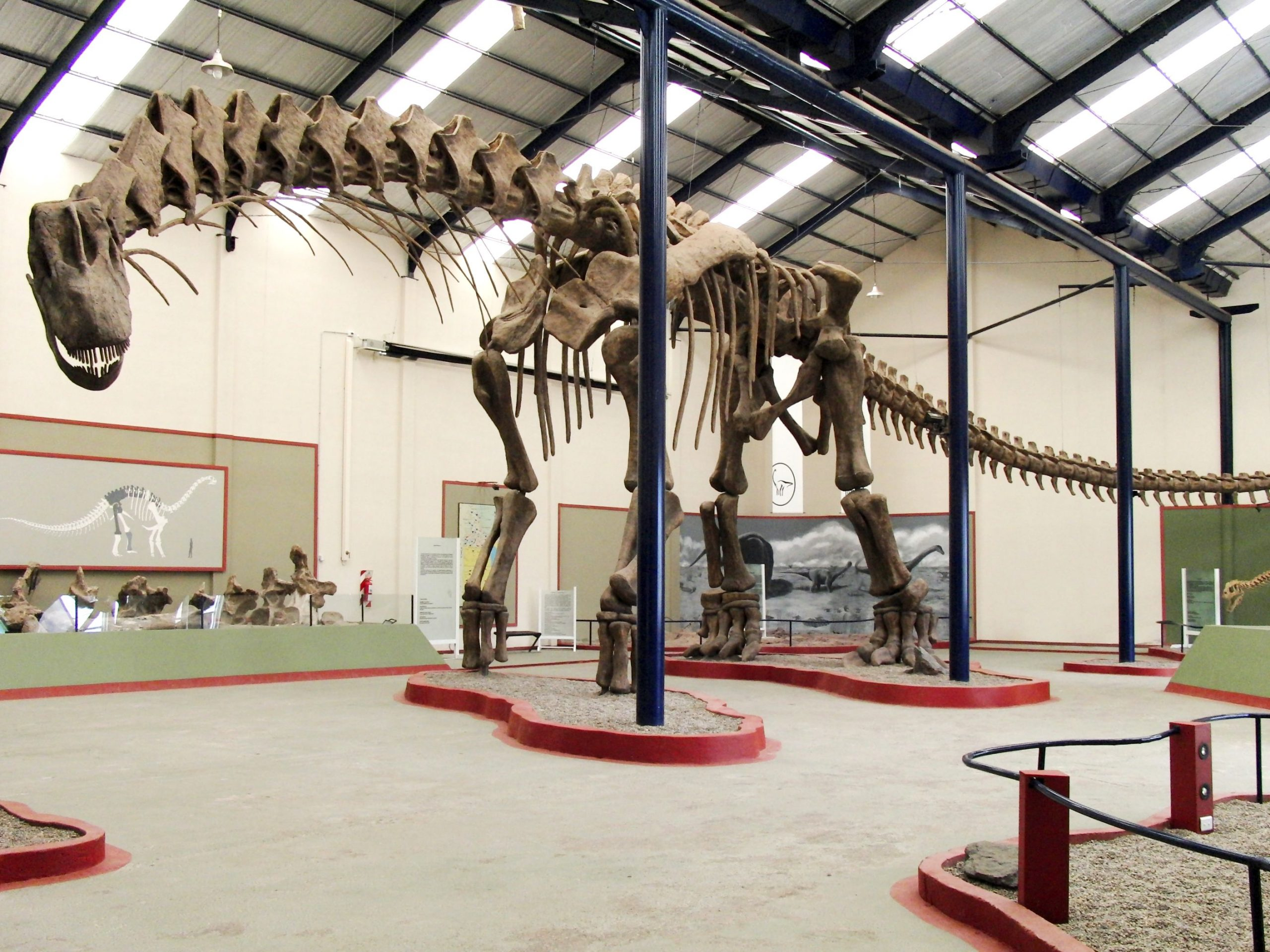 Argentinosaurus_skeleton Sellers_1