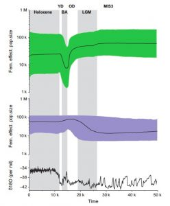 Population sizes in the two species (collared lemming in green, narrow-skulled vole in purple, oxygen isotope values  of ice core on the bottom) reacted differently after last glacial maximum. Collared lemmings clearly had a more severe population decrease than narrow-skulled voles. (Figure 2, Prost et al. 2013).