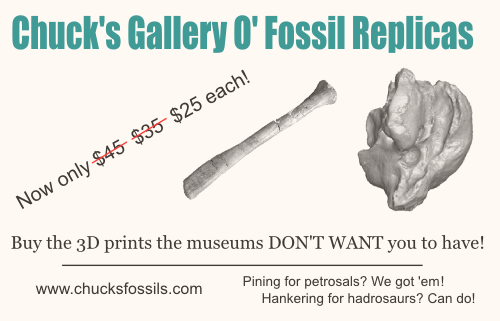 Just one example of the seedy underbelly of the Internet that awaits us if we disseminate fossil images willy-nilly.