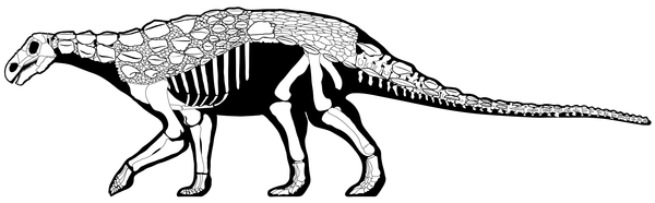 The armored dinosaur Europelta, one of many open access dinosaurs named in 2013