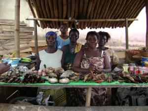 Nigerian fish sellers. (Photo courtesy of Kyle Davis)