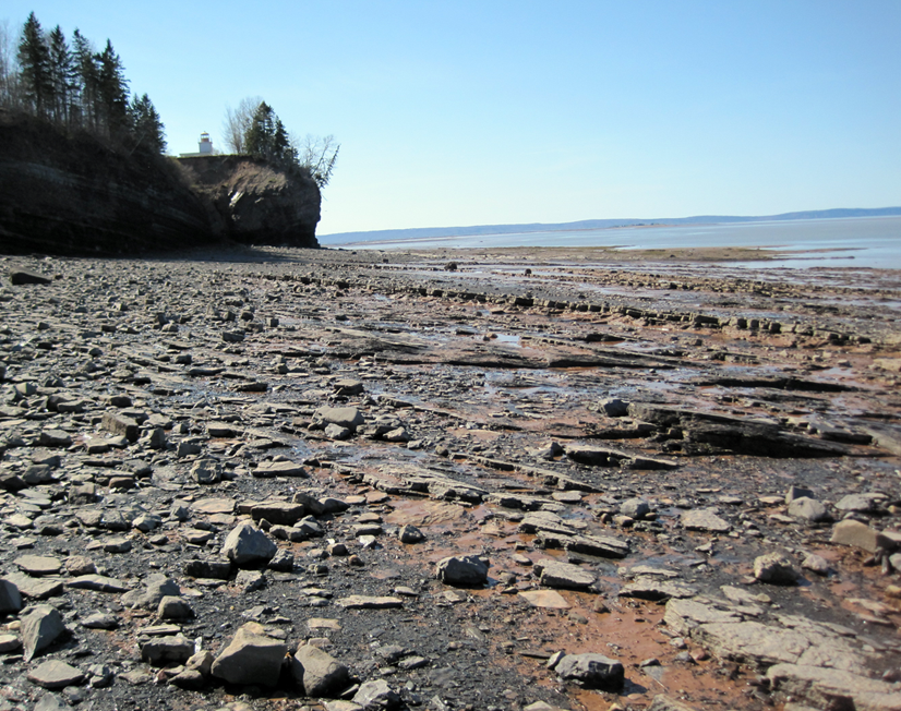 """Rocks from the Horton Bluff Formation in Nova Scotia that yield fossils filling """"Romer's Gap"""". CC-BY, modified from Anderson et al. 2015."""